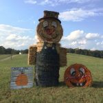 "a pumpkin and a bumpkin made of straw stand next to a sign that says ""Happy Fall Y'All!"""