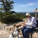 A man and a dog sit at the summit of Mount Gorham in Acadia National Park