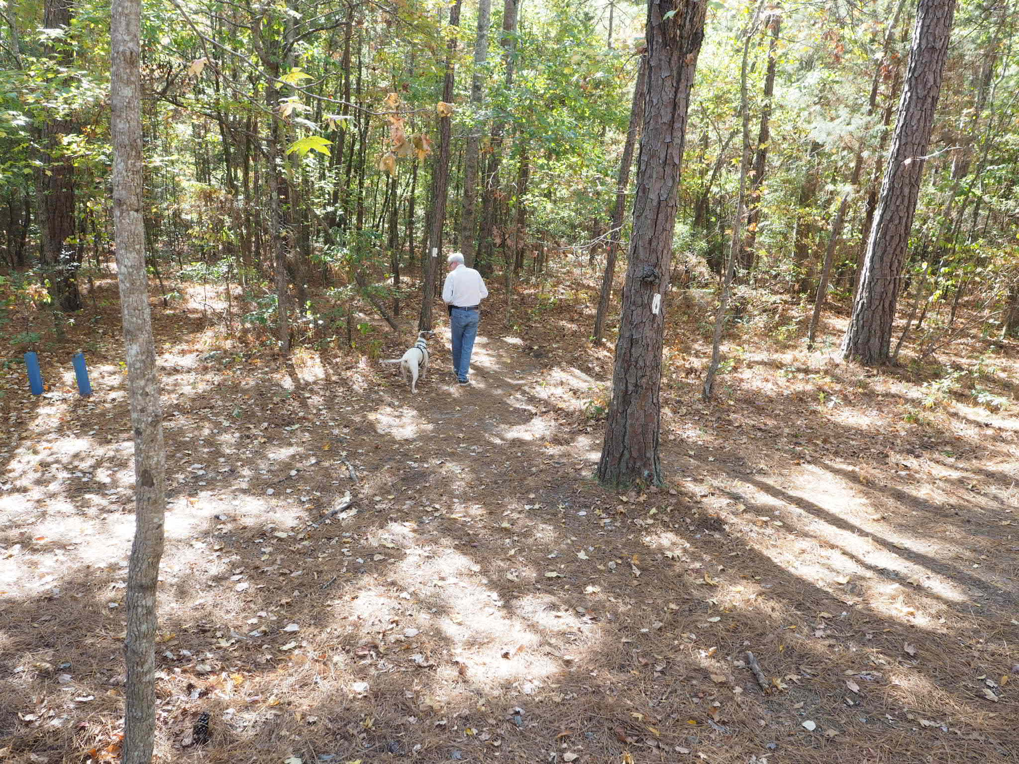A man and a dog hike along a trail at FDR State Park