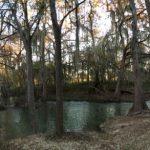 nature trail in Casgtroville Regional Park
