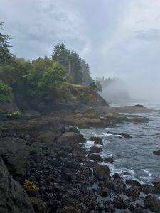 The rocky, tree-lined coast of the Juan De Fuca Straight peeks through the fog at Slat Creek Recreation Area in Washington state