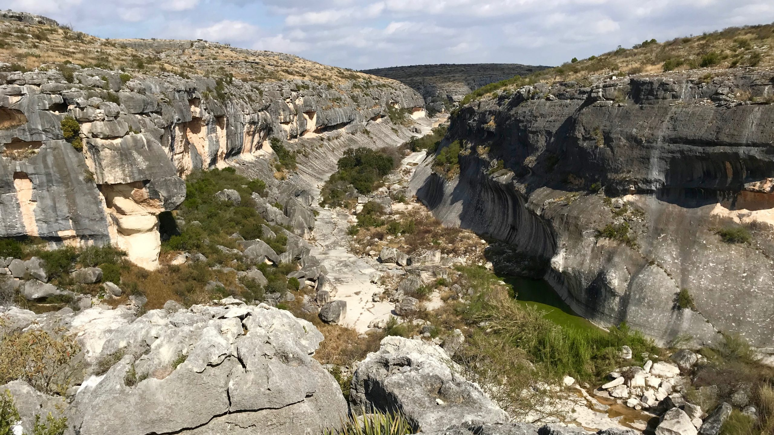 A view from the rim of Seminole Canyon shows the steep limestone sides carved through eons of erosion. Pools of water and green shrubs dot the floor of the canyon.
